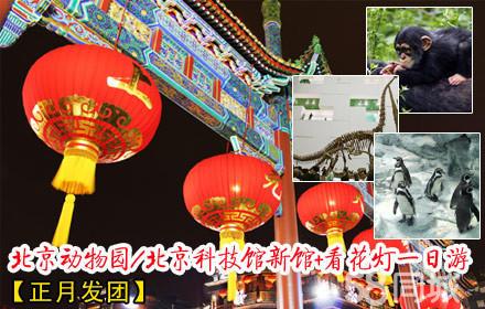 北京动物园/北京科技馆新馆+看花灯:一人次