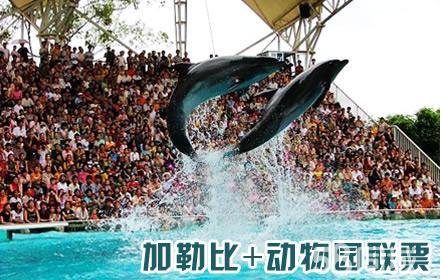 南宁动物园+加勒比水世界:门票各一张