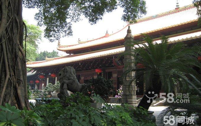 带来一株菩提树,栽在该寺的祭坛上,高僧慧能曾在该寺的菩提树下受戒
