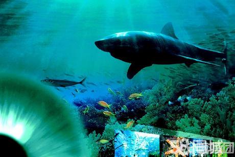 仅120元即享市价200元『青岛海底世界』通票一张,海底世界门票 海上