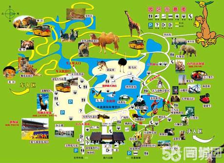 【上海野生动物园一日游团购】