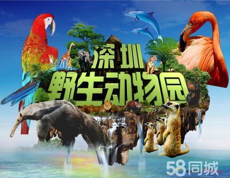 【深圳野生动物园团购】