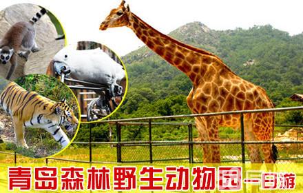 【『青岛森林野生动物园』一日游团购】