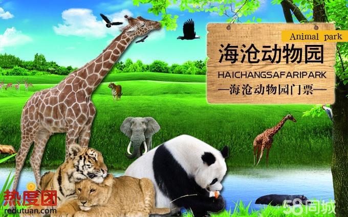还有产自我国的一,二级保护动物东北虎