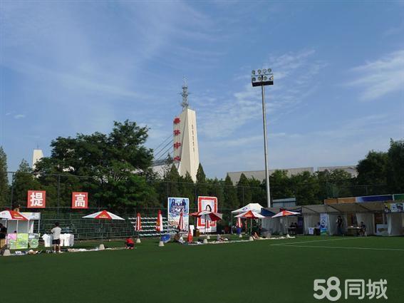北京奥体中心北门足球场